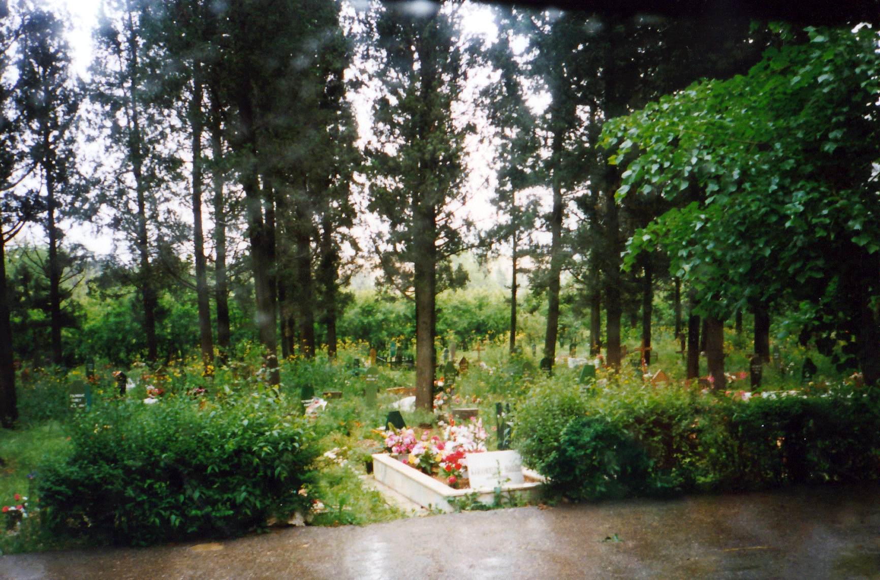 Parks became makeshift cemeteries during the war in Bosnia & Herzegovina